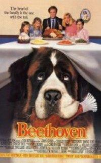 Afacan Köpek Beethoven türkçe dublaj izle