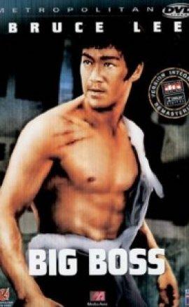 Büyük Patron Bruce Lee türkçe dublaj izle
