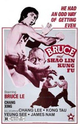 Bruce Ve Shaolin Kung Fu türkçe dublaj izle